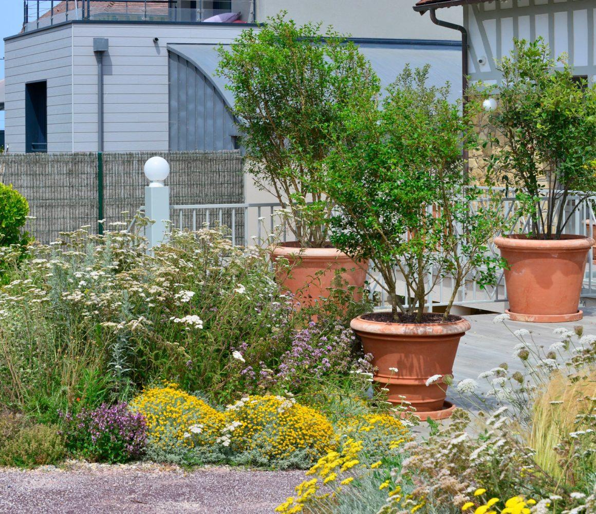 Terrasse du jardin en front de mer