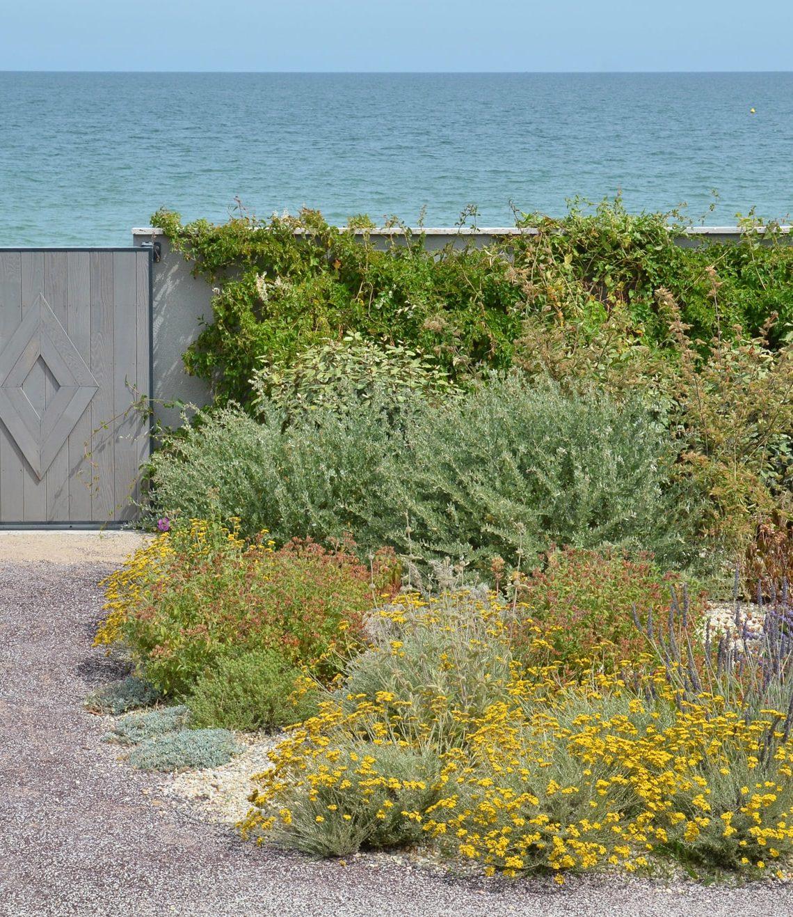 l'esprit méditerranéen des essences du jardin en front de mer
