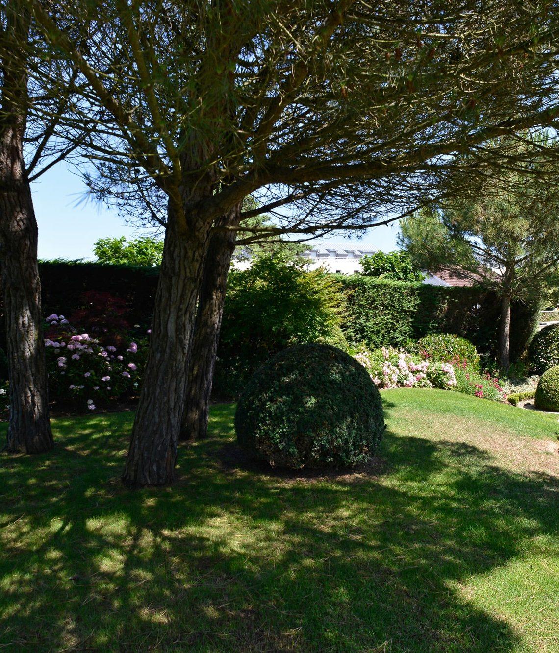 Zone d'ombre du Jardin sous les pins