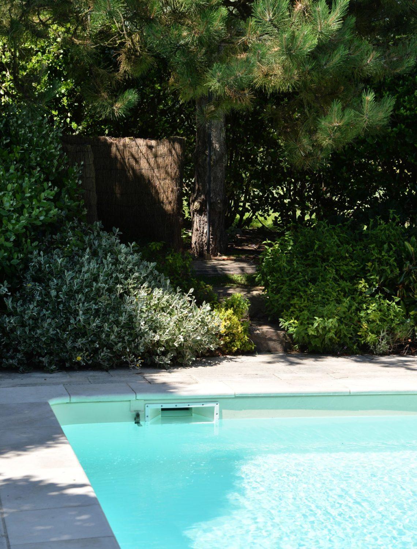 Essences entremêlées au tour de la piscine du Jardin sous les pins