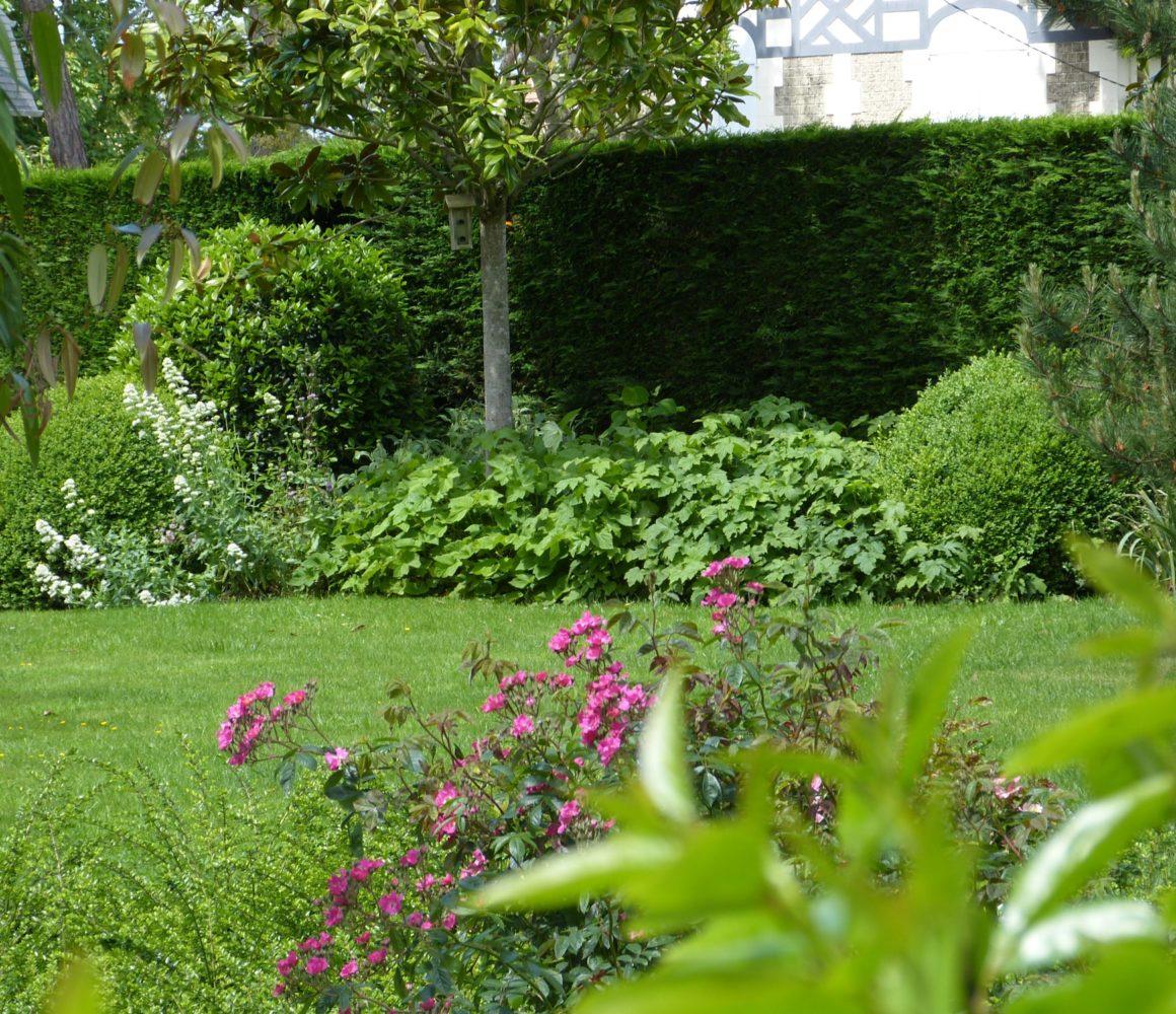 Evergreen Jardin sous les pins