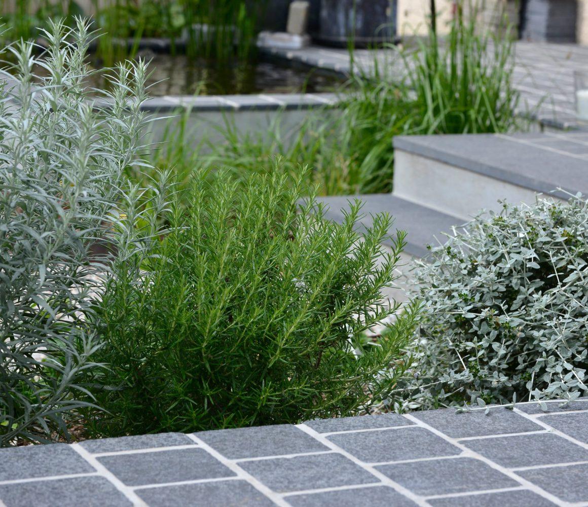 Terrasse du Jardin de Flandre à Cabourg